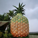The Big Pineapple en Nambour, Queensland