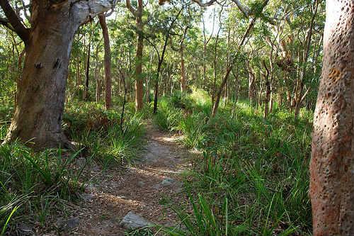 Parque Nacional Real