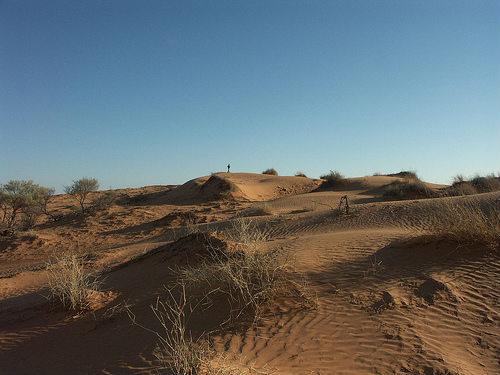 Desierto Simpson