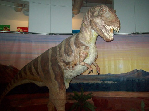 National Dinosaur Museum