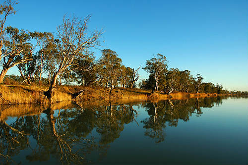 Murray, importante río de Australia