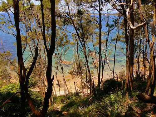 Parque Nacional Ku ring gai Chase, cerca de Sídney