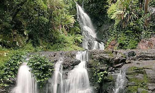 Parque Natural Lamington en Queensland